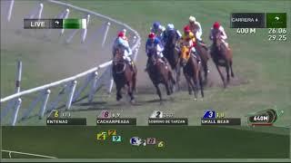 Vidéo de la course PMU MONROE S.