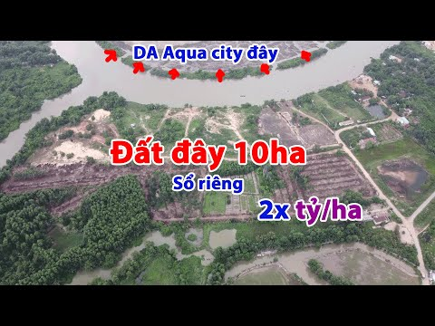 Bán đất sào mẫu phường Tam Phước Biên Hòa 10 ha giá 250 tỷ
