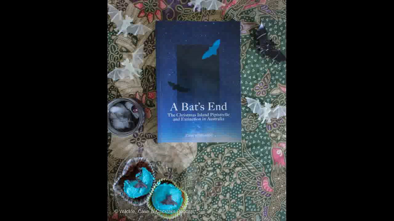 WCC Ep.34. A Bat's End: Extinction of The Christmas Island Pipistrelle - YouTube