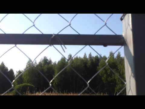 Сетка рабица, забор из сетки рабицы с воротами и калиткой.