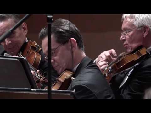 Leroy Anderson - Plink, Plank, Plunk /Anna Duczmal-Mróz conductor