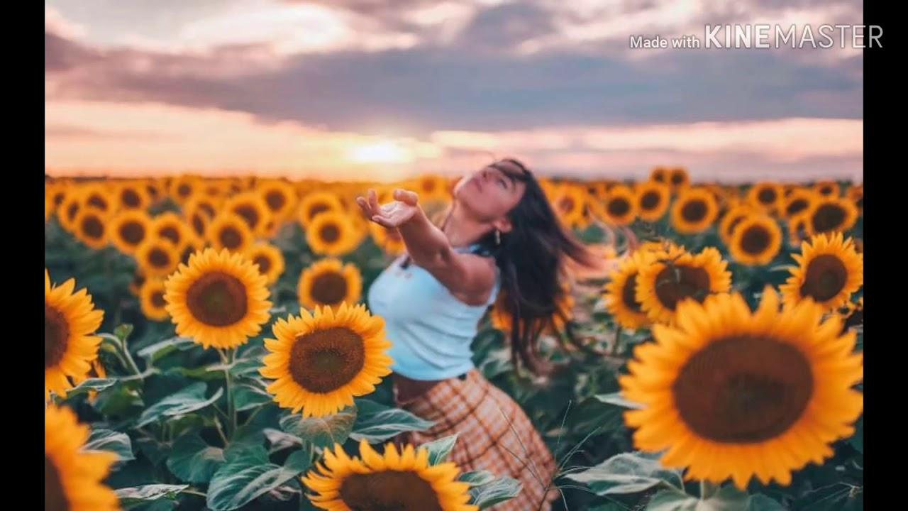 Sunflower - Post Malone - Swae Lee - YouTube