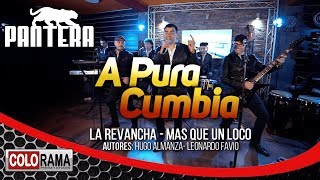 PANTERA - A PURA CUMBIA (La revancha - Mas que un loco) Autores: Hugo Almanza - Leonardo Favio