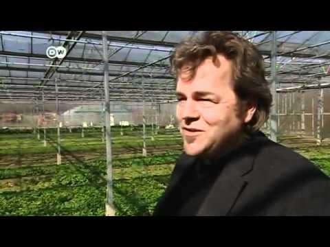 Nachhaltig Landwirtschaften - Mit Gewinn   Global 3000