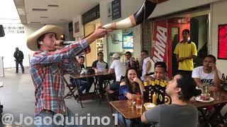 Baixar CANTANDO MANO WALTER EM LUGARES PÚBLICOS