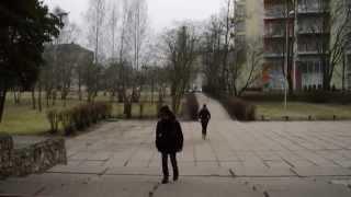 Дорога в школу