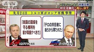ロシア・プーチンVSトルコ・エルドアン 攻防まとめ(15/12/03)