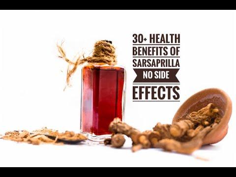 30+ Health Benefits of Sarsaparilla No Side-Effects