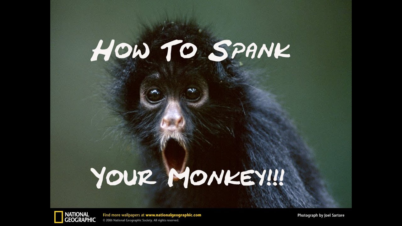 Spank the monkey tips