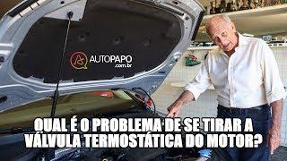 Qual é o problema de se tirar a válvula termostática do motor? thumbnail