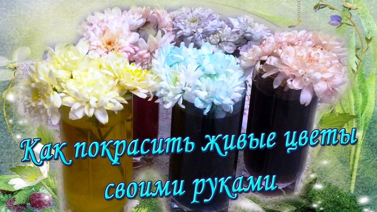 Живые цветы своими руками фото 46