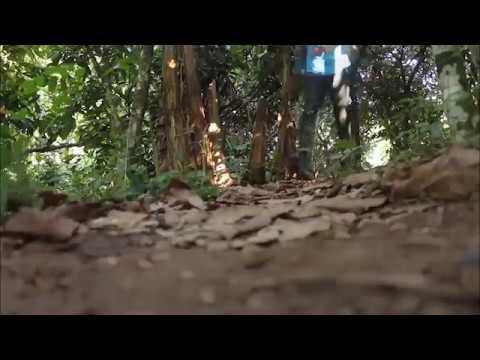 Ewatomi official Trailer thumbnail