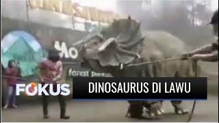 Viral Video Hewan Purba Mirip Dinosaurus Mengamuk di Magetan | Fokus