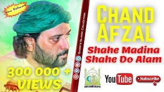 New Qawali  2014 - Shahe Madina Shahe Do Alam  - QIC