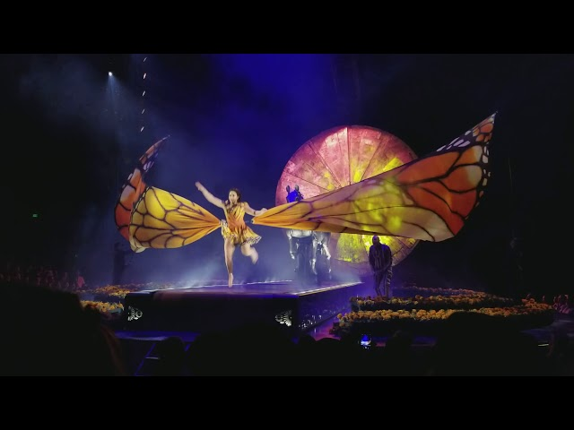 cirque du soleil LUZIA monarch butterfly intro