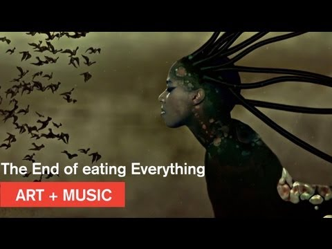 Wangechi Mutu + Santigold - The End of eating Everything - Nasher Museum at Duke Travel Video