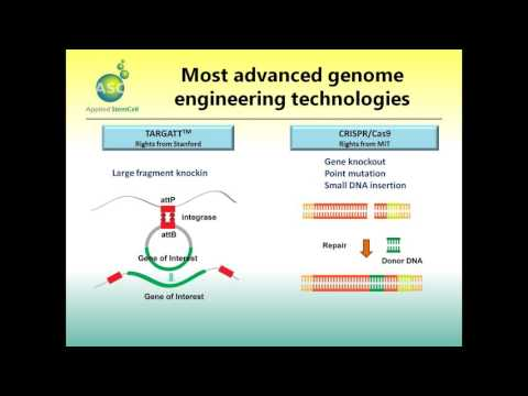 2015 12 09 11 00 CRISPR Cas9 modified induced pluripotent stem cells iPSCs for in vitro genetic dise
