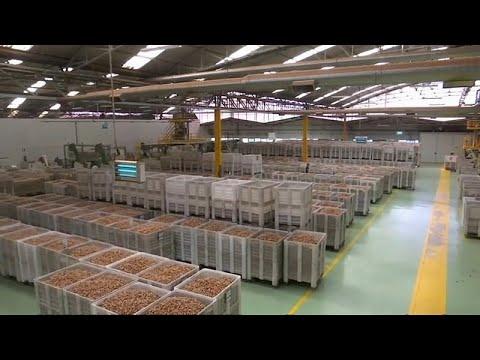 importações portuguesas aumentaram 8,6% em agosto