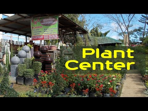 Garden Center - Flower Shop  - Decorative Plants - Philippines