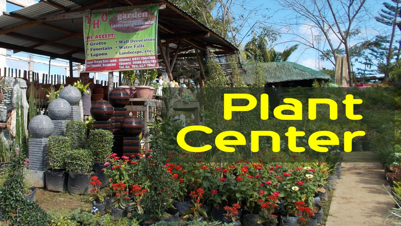 Amazing Garden Center   Flower Shop   Decorative Plants   Philippines   YouTube Images