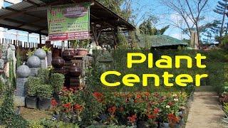 Garden Center - Flower Shop  - Decorative Plants - Philippines