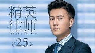 精英律師-25-the-best-partner-25-靳東-藍盈瑩-孫淳等主演