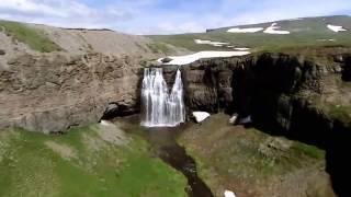 природа Аляски,звери  Документальный фильм