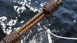 Первые выходы в море яхты