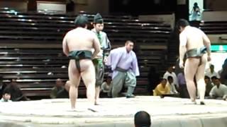 豊木村 勝ち 平成27年大相撲五月場所 2015-05-12