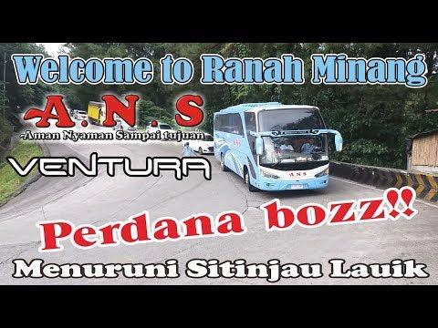 Bus ANS Terbaru VENTURA Perdana Menuruni Sitinjau Lauik