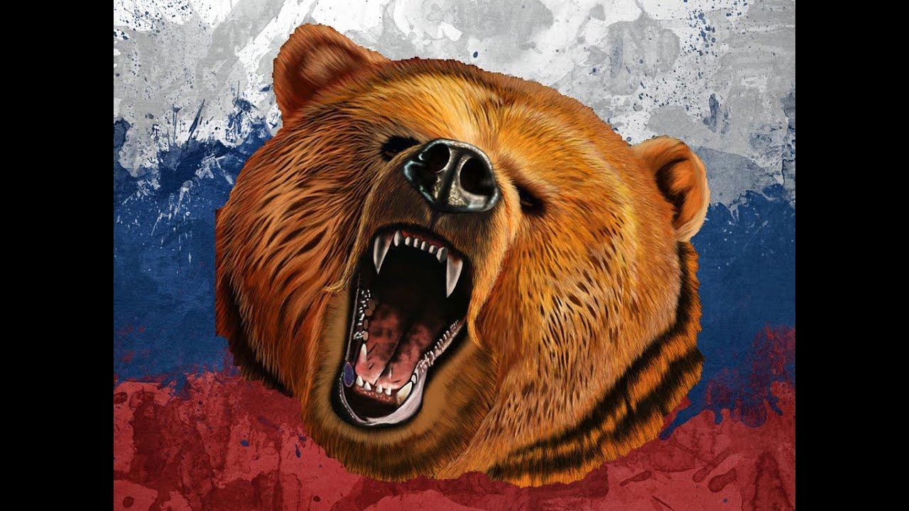 Русские медведь картинки