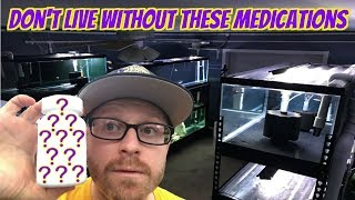 Medications Every Fish Keeper Should Have At All Times