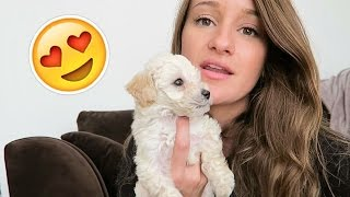 IN LOVE WITH MATTY!   VEDA Day 15