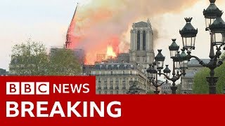 Baixar The moment Notre-Dame's spire fell - BBC News