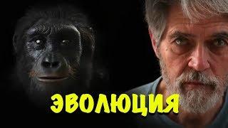 Эволюция человека. Теория Дарвина. От австралопитека до человека разумного.