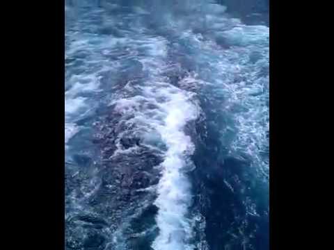 Mediteran Sea From Louis Olympia Ship