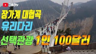중국 장가계 대협곡 유리다리 선택관광1인100달러