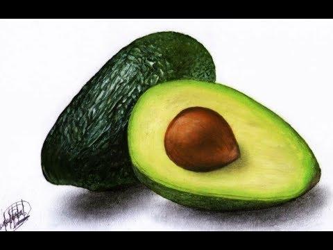 Pintura al oleo de una palta (aguacate)   Drawing a avocado in oil