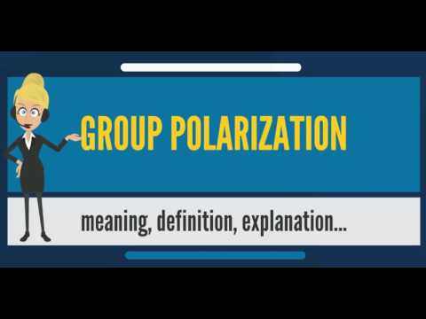 What Is Group Polarization What Does Group Polarization Mean Group