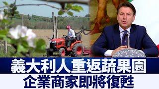 義大利人重返蔬果園 企業商家即將復甦|新唐人亞太電視|20200429
