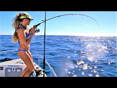 Deep Sea Fishing for TRIPLETAIL & More!