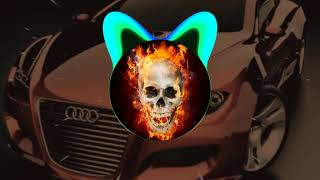 X-Ray &amp Sefa Taskin _ Phoenix