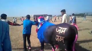 Jam Jam Group Ke { Jam Jam } Ki Takkar Aurangabad, Maharashtra