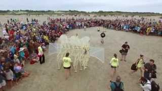 Strandbeests on Crane Beach