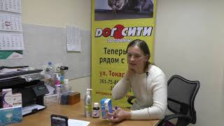 Самолечение кожных заболеваний у собак и кошек. Взгляд врача-дерматолога 2 часть