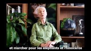 Message de Dr. Jane Goodall pour la marche mondiale pour les éléphants et rhinocéros