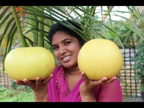 HOW TO CUT AND EAT POMELO FRUIT - HEALTHY VILLAGE FOOD