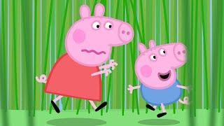 Peppa Wutz | Das Lange Gras! | Peppa Pig Deutsch Neue Folgen | Cartoons für Kinder