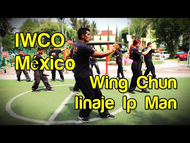 Linaje del Wing Chun de Ip Man continúa con la IWCO México