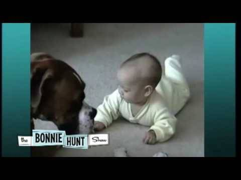 """Baby and Boxer Seen on """"The Bonnie Hunt Show"""""""